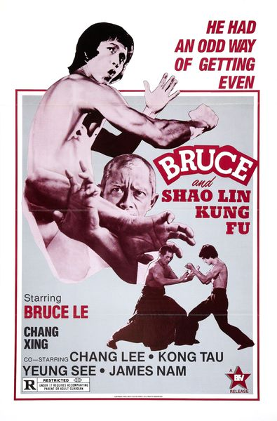 bruce_and_shao_lin_kung_fu_poster_01_resultat