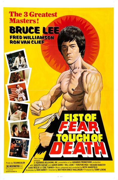 fist_of_fear_touch_of_death_poster_01_resultat