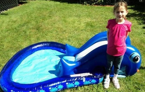 whale.pool.real