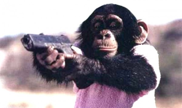 Monkey-gunok