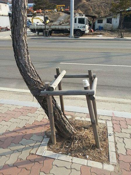 arbre_resultat