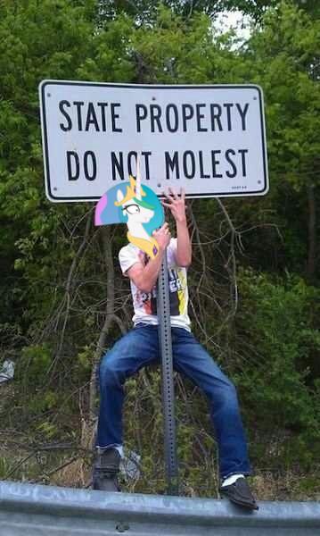 licorne do not molest_resultat
