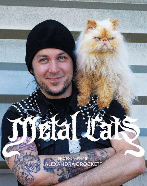 metal-cats-alexandra-crockett-11_resultat