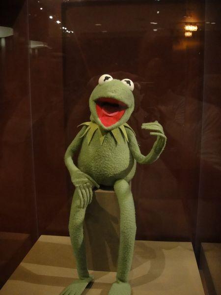 Marionnette originale Kermit_resultat