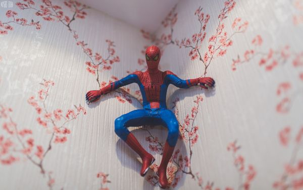 spider3_resultat