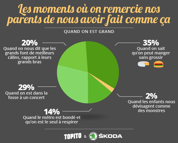 Infographie_grands-16