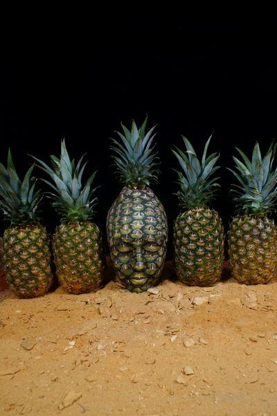 ananas-5_resultat