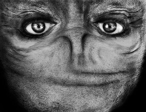 upside-down-portraits-alienation-anelia-loubser-101_resultat