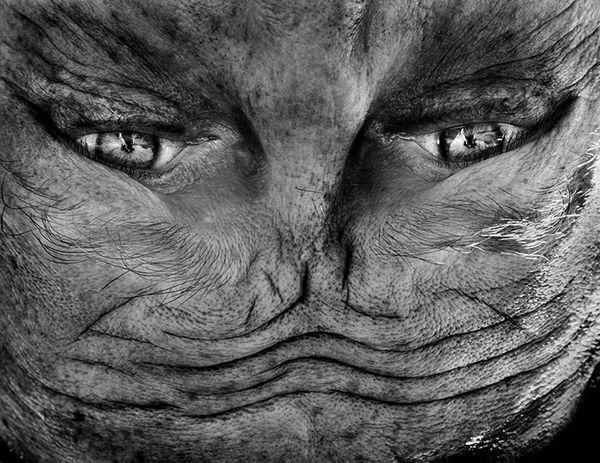 upside-down-portraits-alienation-anelia-loubser-41_resultat