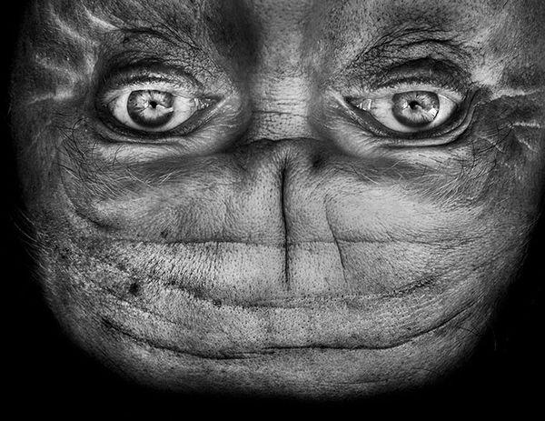 upside-down-portraits-alienation-anelia-loubser-51_resultat
