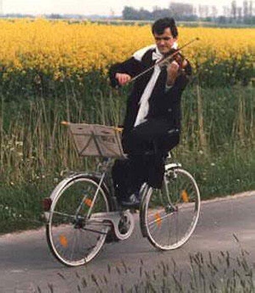 violon velo