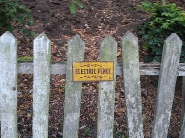electric fence_resultat