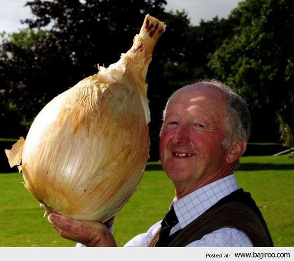 largest-onion-vegetable-things-in-world-funny-images-pictures-photos_resultat