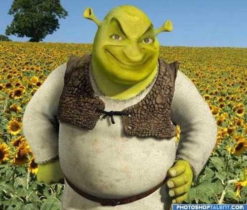 shrek-faceswap-mr-bean