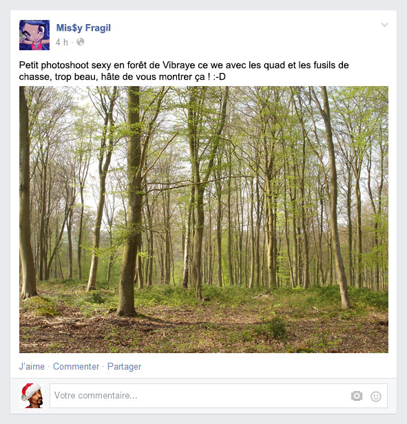 foret1