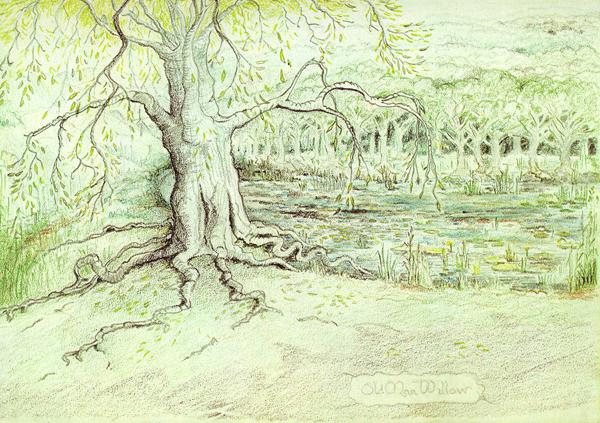 old man willow