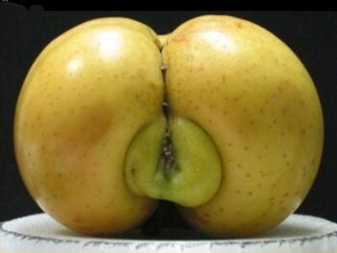 fruitpenis10