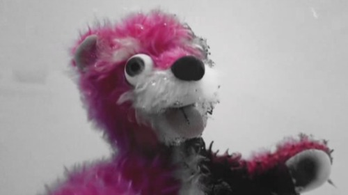 pink_bear1