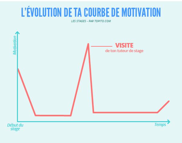 Infographie_stage_Plan de travail 8