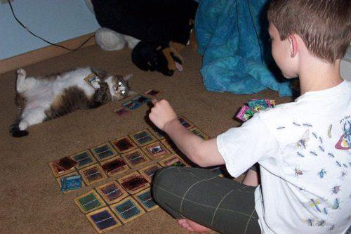 carte-magic-chat
