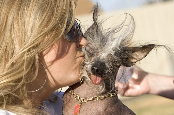 ugly_dogs_03