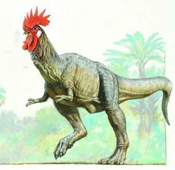 Chicken-Dinosaur
