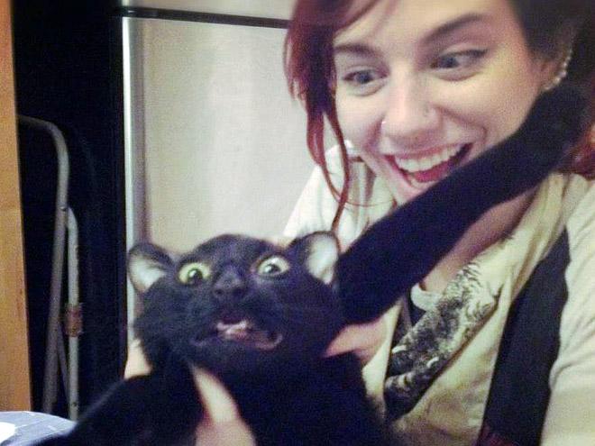 chat-pas-calin-1