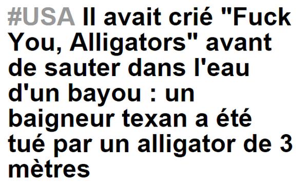 Alligators_resultat