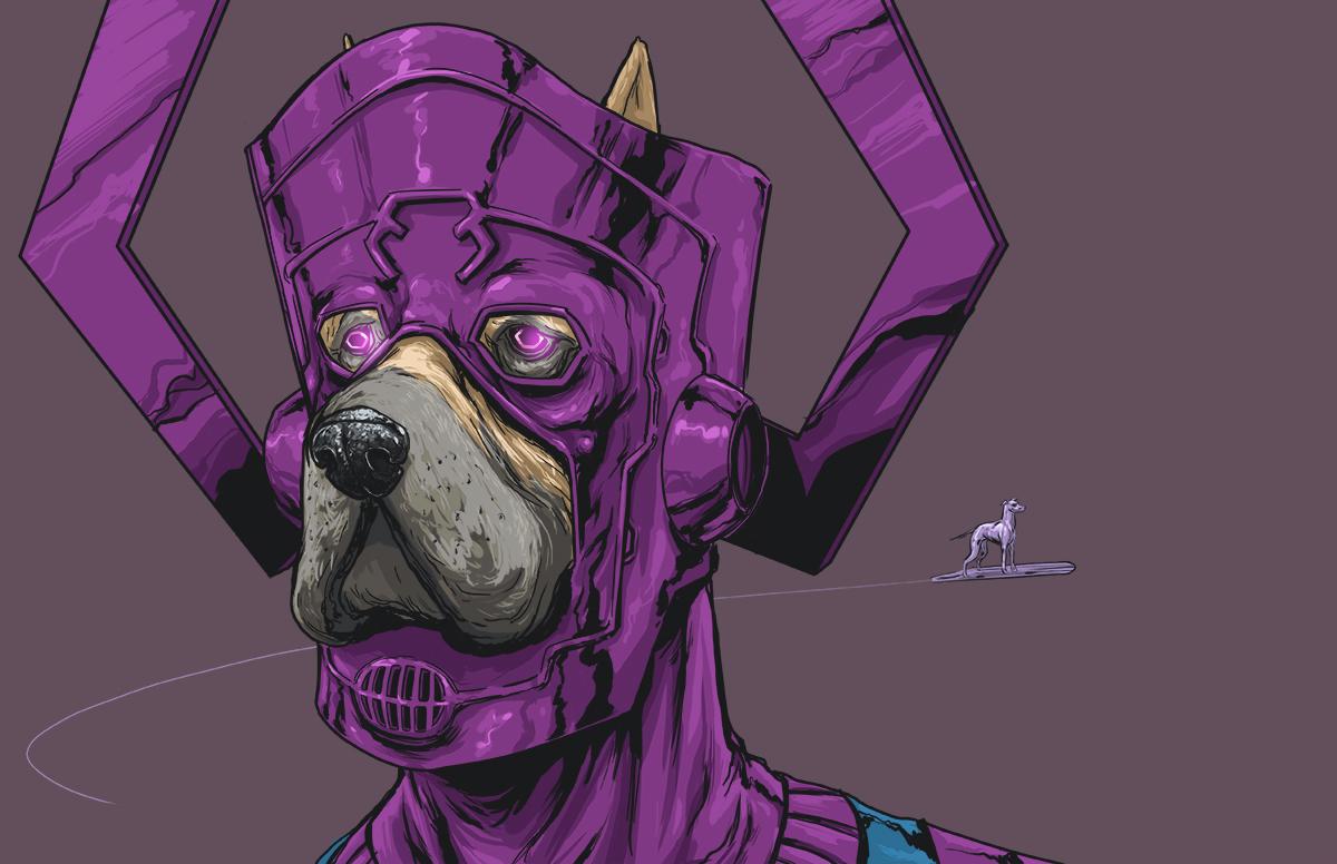 chien-super-heros-11
