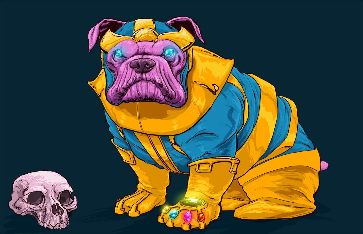 chien-super-heros-15