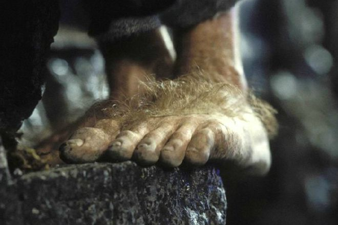 hobbit_feet_rect1