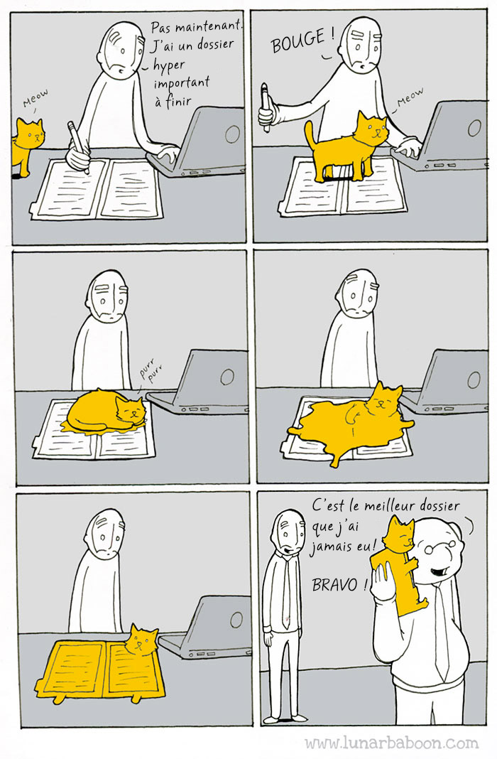 vie-avec-chat-comics-lunarbaboon-10-trad