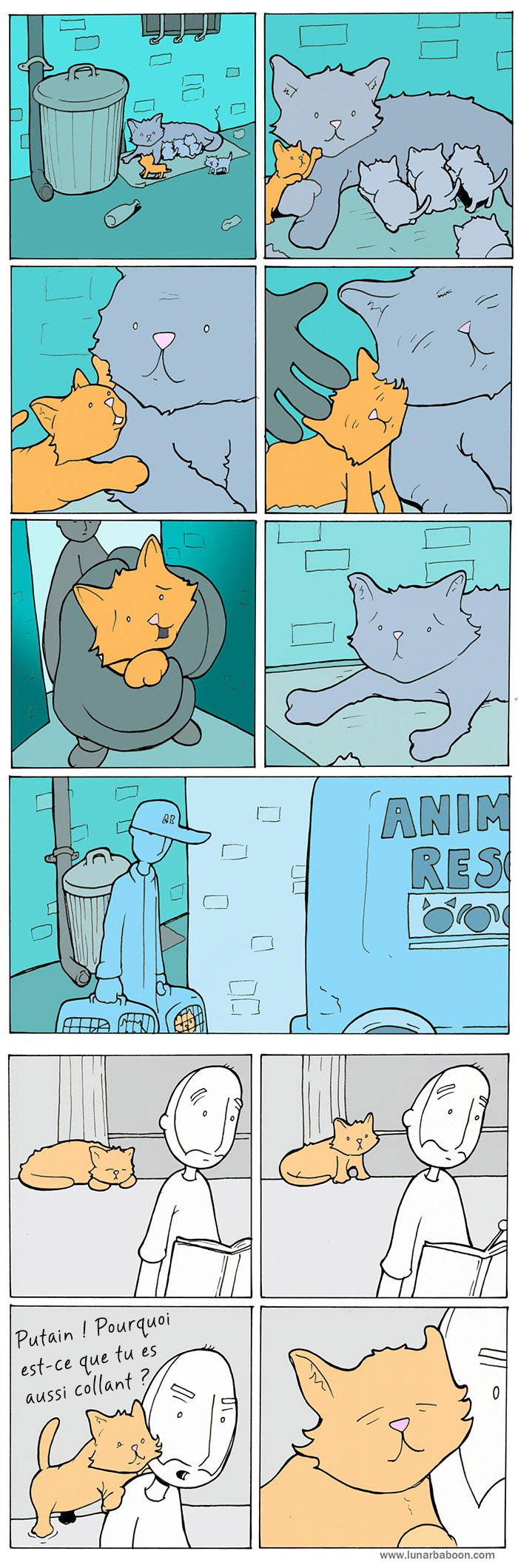 vie-avec-chat-comics-lunarbaboon-11-trad