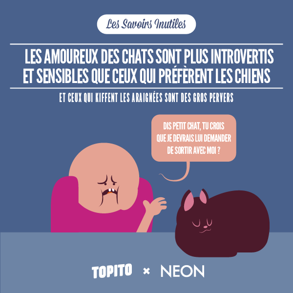 SAVOIRS_INUTILES_CHATS-01