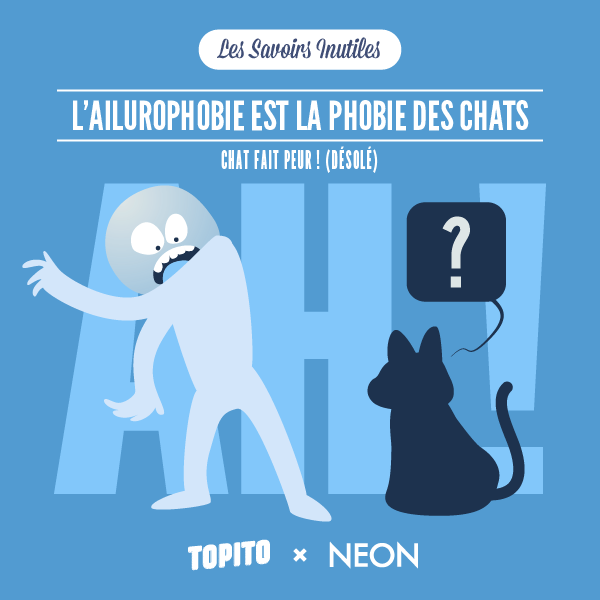 SAVOIRS_INUTILES_CHATS-03