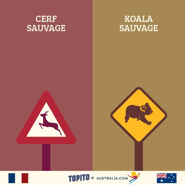 FRANCE VS AUSTRALIE-08