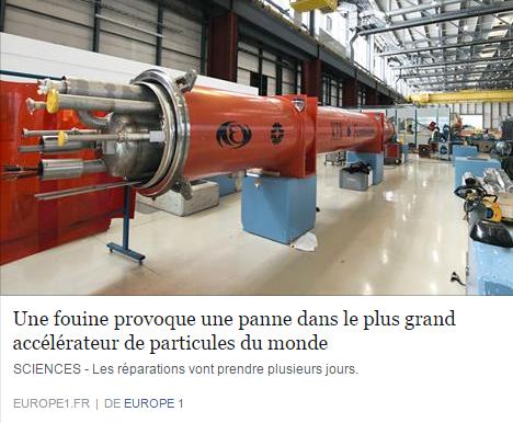 fouine accelerateur